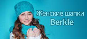 berkle-300x137